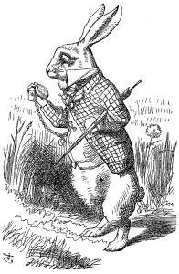 from ALICE'S ADVENTURES IN WONDERLAND, by Lewis Carroll, with illustrations by John Tenniel. Macmillan and Co, London, 1898.